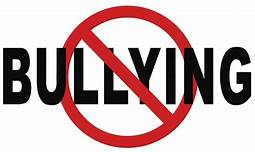 District Anti-Bullying Information